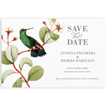 Paradise Love, save the date -kortti